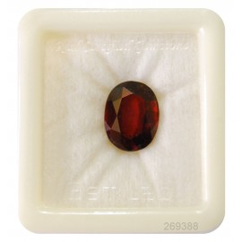 Hessonite Gemstone Premium 10+ 6.3ct