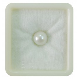 Pearl South Sea 5+ 3.2ct