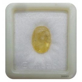 Pukhraj Gemstone Std 8.4 CT (14 Ratti)