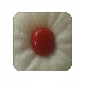 Certified Red Coral Premium 6+ 3.85ct